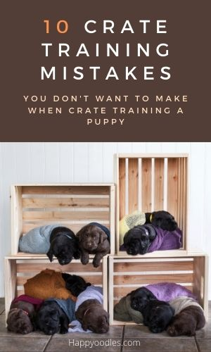 How to Crate Train a Puppy: 10 Mistakes to Avoid Pin  Brown background with white lettering and pic of puppy sleeping in wooden crates