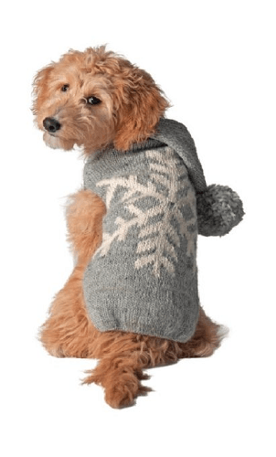 Grey and white snowflake dog sweater on doodle