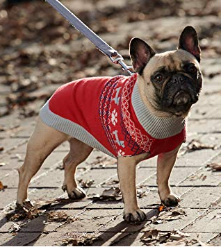 Red Dog Christmas Sweater