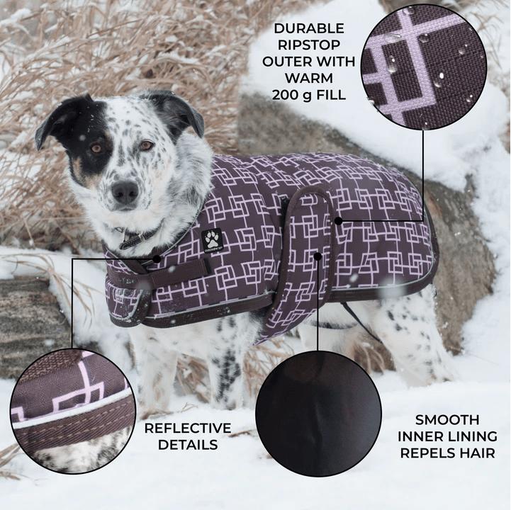 Shedrow K9 Glacier Winter Coat