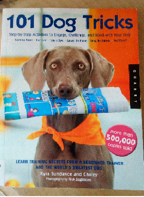Boredom Busters for Dogs: 101 Dog Tricks
