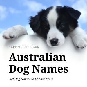 Australian Dog Names: 200 Dog Names - Happyoodles.com title page