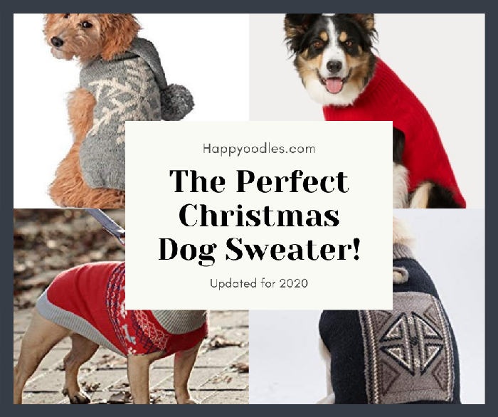 The Perfect Dog Christmas Sweater - Updated for 2020