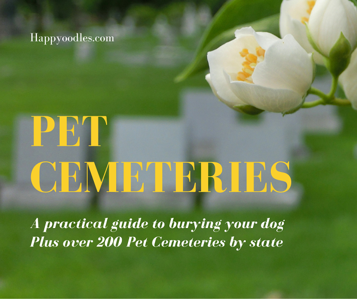Pet Cemeteries: A practical guide to burying your dog - title page