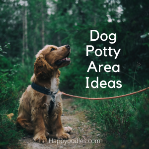 Dog Potty Area Guide: Tips and Ideas cover picture