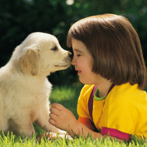 Pup and little girl nose to nose