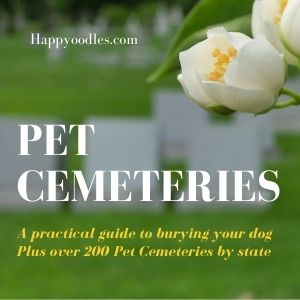 Pet Cemeteries: A practical guide to burying a dog