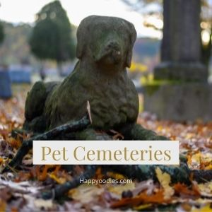 Active Pet Cemeteries in the USA